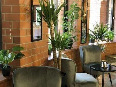 Wnętrze restauracji 0